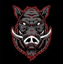 Vintage Hog Head Concept