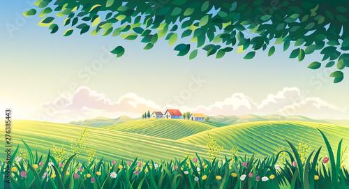 Fotobehang Zwavel geel Rural summer landscape with flowers and grass in the foreground. Raster illustration.