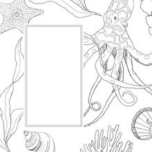 Line Art Border With Coral Reef Plant And Octopus. Hand Painted Seaweeds, Shells And Starfish Isolated On White Background. Nautical Template. Illustration For Design, Print Or Background.