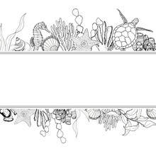Line Art Border With Coral Reef Animals. Hand Painted Seaweeds, Shells, Seahorse, Turtle And Starfish Isolated On White Background. Nautical Template. Illustration For Design, Print Or Background.