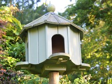 Green Wooden Dovecote In Garden With Blurred Background