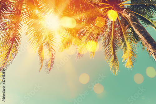 Poster Trees Tropical palm tree with colorful bokeh sun light on sunset sky cloud abstract background.