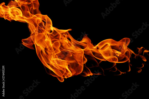 Poster Fire / Flame movement of fire flames isolated on black background.