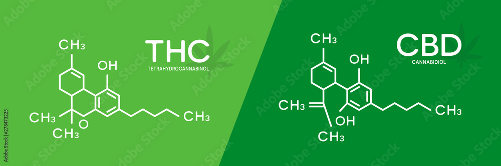 Fototapeta THC and CBD formula. Tetrahydrocannabinol and cannabidiol molecule structure.