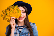 Close-up Portrait Of Her She Nice Attractive Lovely Charming Cute Cheerful Cheery Straight-haired Lady Holding In Hands Hiding Behind Leaves Isolated Over Bright Vivid Shine Yellow Background