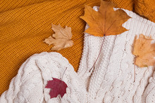 Knitted Sweaters And Dry Leaves Close-up