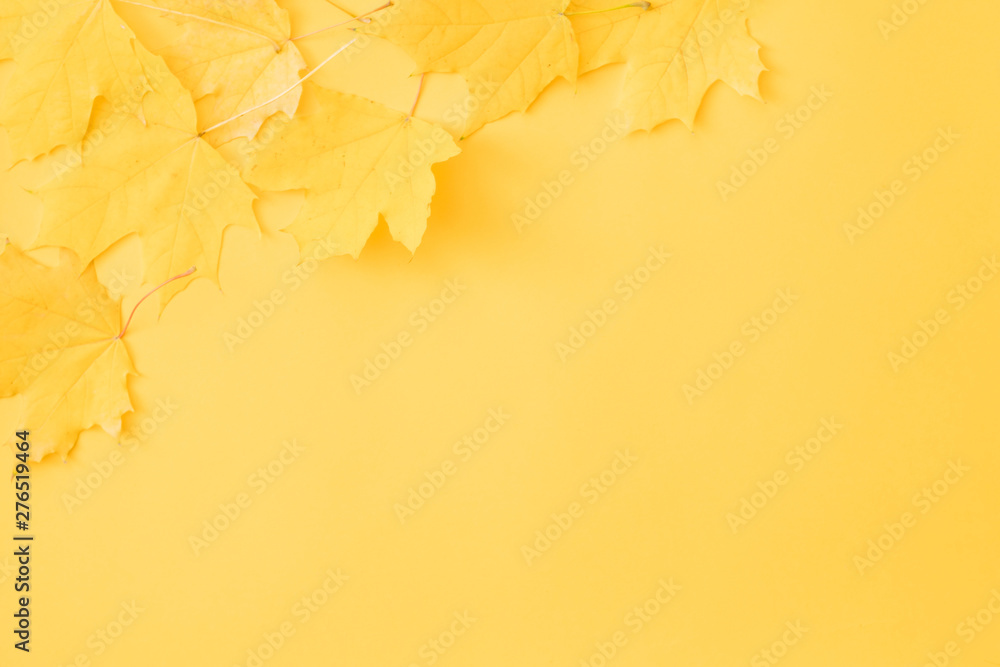 Fototapety, obrazy: Harvest time. Fall yellow maple leaves scattered over orange background. Copy space.