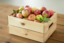 Fruits, Food And Harvest Concept - Ripe Apples In Wooden Box On Table