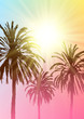 Summer tropical background with palm trees silhouettes on sunny sky