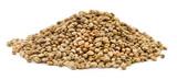 Fototapeta Zwierzęta - Pile of hemp seeds.
