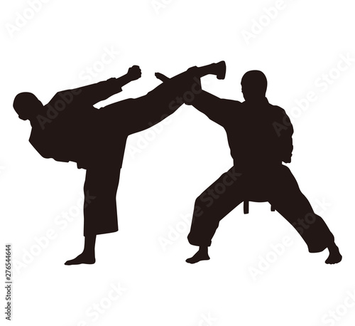 People Are Fighting Silhouettes Canvas Print