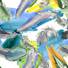 FototapetaWatercolor bird feather from wing isolated. Aquarelle feather for background. Seamless background pattern.