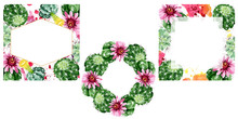 Green Cactus Floral Botanical Flowers. Watercolor Background Illustration Set. Frame Border Ornament Square.