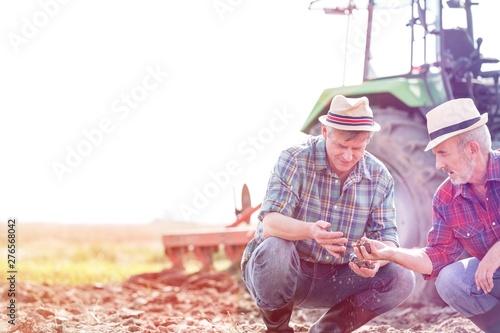 Obraz Eco farm - fototapety do salonu