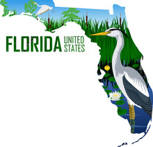 Vector Florida - American State Map With Great Blue Heron In Wetland