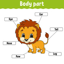 Body Part. Learning Words. Edu...