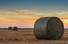 Haystacks Lie On A Field Harve...