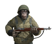 Chimp Soldier On White