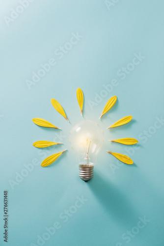 Fototapeta Ecology and energy saving concept with eco bulb obraz