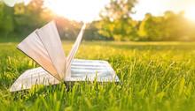 Open Book In Green Grass Backg...