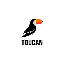 Toucan Logo Design Stock Images