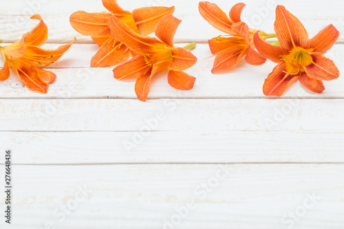 Stampa su Tela  orange day-lily on wooden background