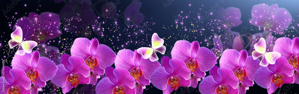 Fototapety, obrazy: Glowing banner with magic butterflies with mysterious neon orchids and sparkle stars for storefront flowers design or decor florist shop