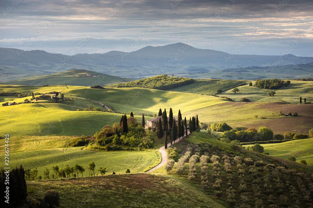 Fototapety, obrazy: Countryside near Pienza, Tuscany, Italy