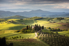 Countryside Near Pienza, Tusca...