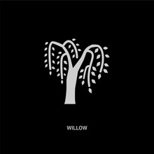 White Willow Vector Icon On Bl...