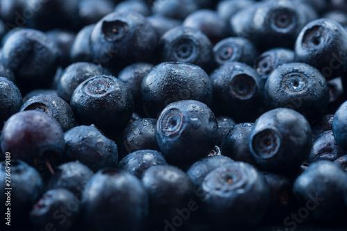 Fresh ripe blueberries with drops of dew  Macro photo  Fresh