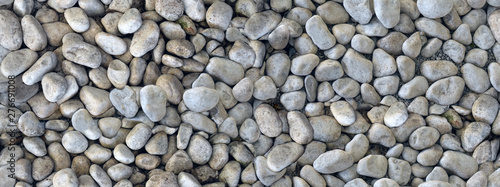 Fotomural pebble gray colors, seamless texture