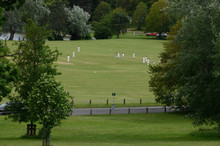 Cricketers In The Countryside