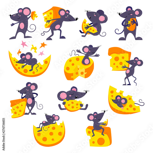 Fotografie, Obraz  Cartoon mouse vector mousy animal character rodent and funny rat with cheese eat