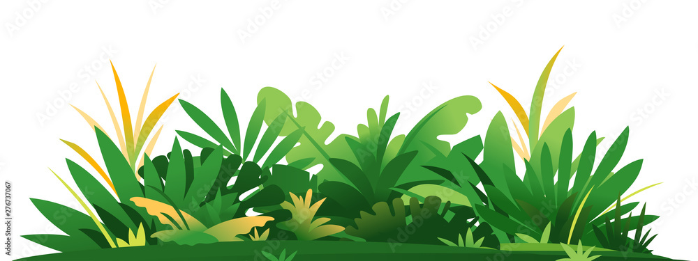 Fototapety, obrazy: Decorative composition of jungle plants on ground, group of green plants on the sunny lawn isolated, dense vegetation of the jungle