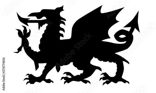 Fotografía Welsh Dragon Silhouette