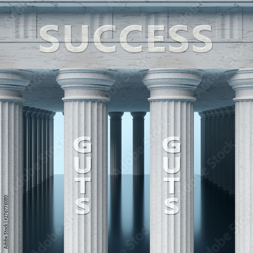 Guts is a vital part and foundation of success, it helps achieving success, pros Canvas Print