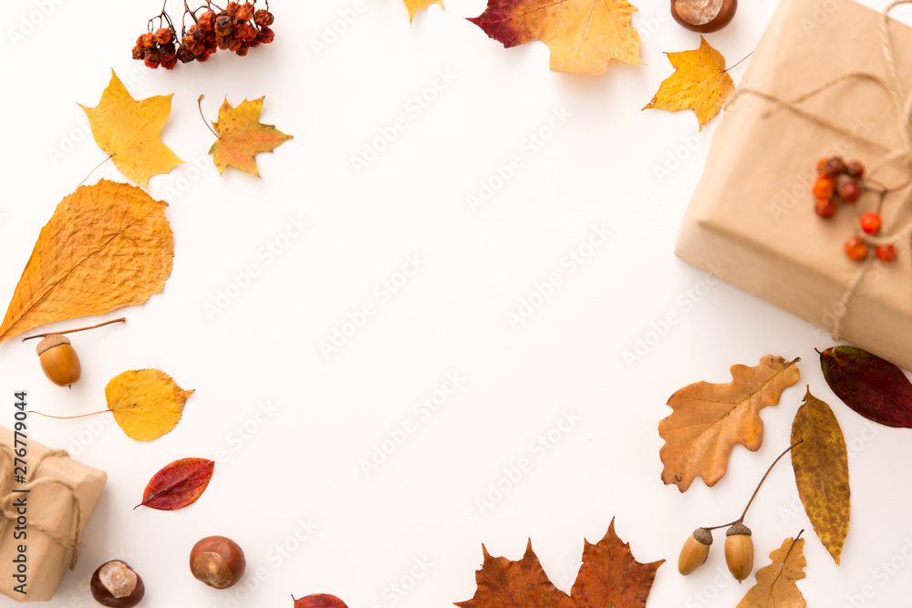 Fototapety, obrazy: nature and season concept - frame of gift boxes packed into postal wrapping paper, autumn leaves, chestnuts, acorns and rowanberries on white background