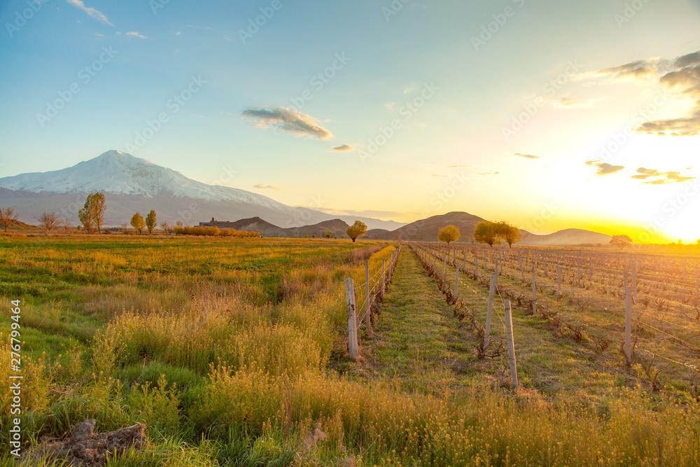 Fototapety, obrazy: ararat mountain with khor virap