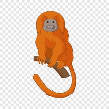 Golden Lion Tamarin Icon. Cart...