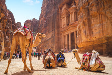 Petra Al Khazneh (The Treasury...
