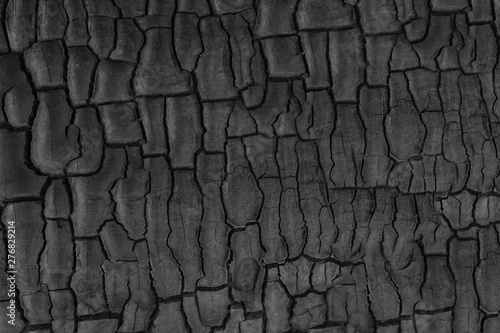 Cadres-photo bureau Texture de bois de chauffage Wood charcoal texture. Burnt tree. Black coal background
