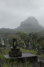Misty Gravestones