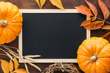 Fall Chalkboard Background With Pumpkins, Leaves And Wheat.