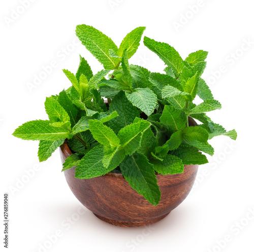 Obraz Fresh mint leaves bunch isolated on white background - fototapety do salonu