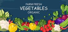 Farm Fresh Vegetables Vector B...