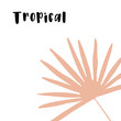 Vector isolated Doodle illustration with tropical jungle green palm leaves.