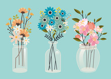 The Collection Set Of Flower In The Jar Pack In Flat Vector Art. The Transparent Jar Have A Flower. Beautiful Flower In The Jar On Blue Background Can Use For Banner And Pattern.