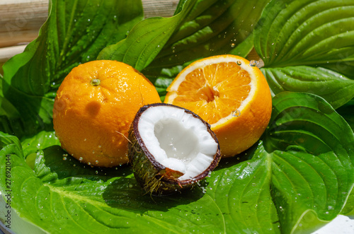 Poster Fruit Oranges, coconut on a green leaf with dew drops. Fresh fruits, healthy eating