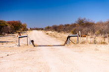 Farm Gate, Fence And Cattle Gr...